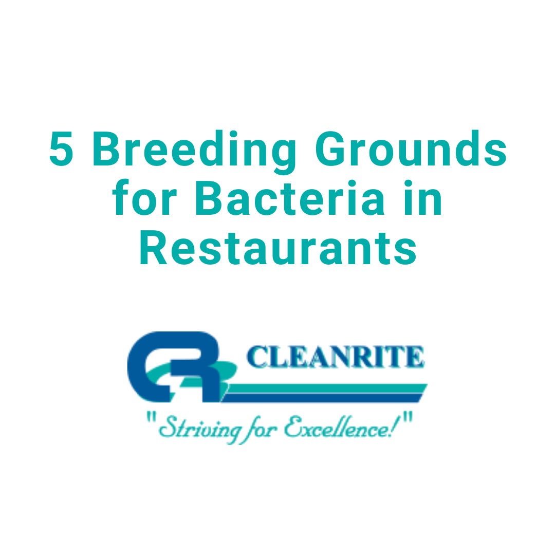 5 Breeding Grounds for Bacteria in Restaurants