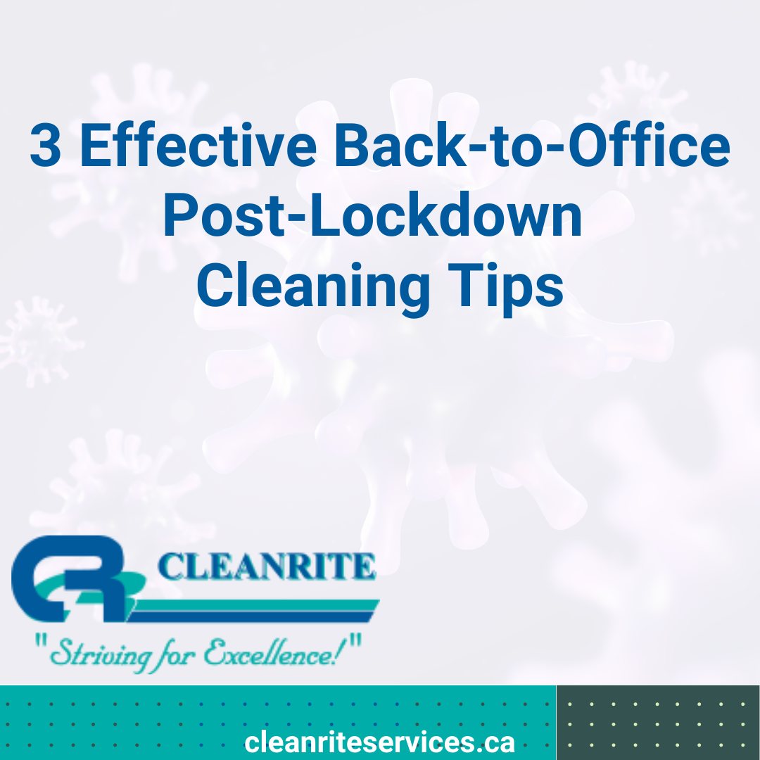 lockdown cleaning tips